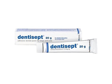 Buy DentiSept Now | Dental Protection for Cats & Dogs
